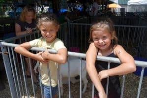 Mark Your Calendar: County Fair starts July 24